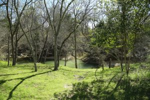 Creekside property 2