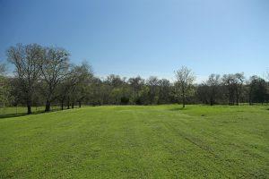 creekside property 3